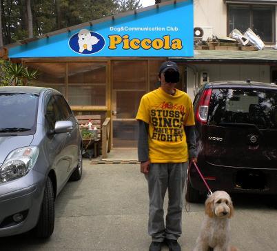 Piccola_3
