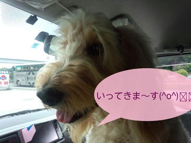 北海道へGo<br />  〜!!